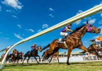 Cairns Jockey Club