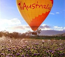 Celebrate The Chinese New Year Hot Air Balloon Fest In Cairns