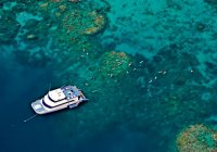 Great Barrier Reef Reef Experience Cairns Australia Day Tour Snorkel Scuba Trips